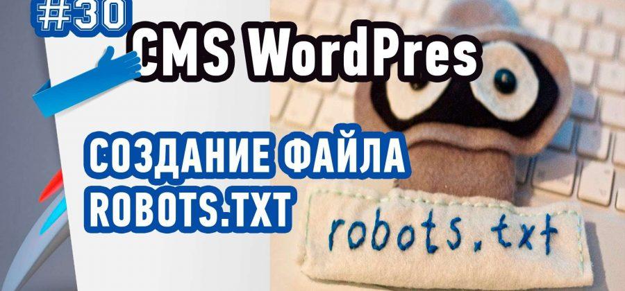Как создать файл Robots.txt в плагине All In One Seo Pack