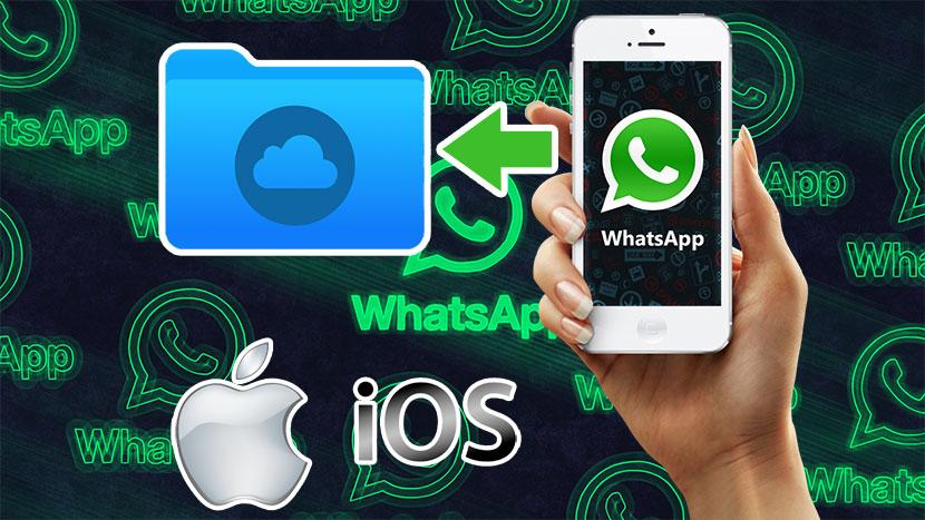 Как сделать резервную копию чатов WhatsApp на iPhon